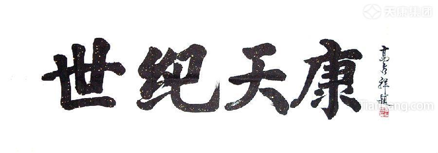安徽天康(集團)股份有限公司資質榮譽