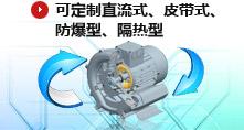 可定制直流式、皮帶式、防爆型、隔熱型