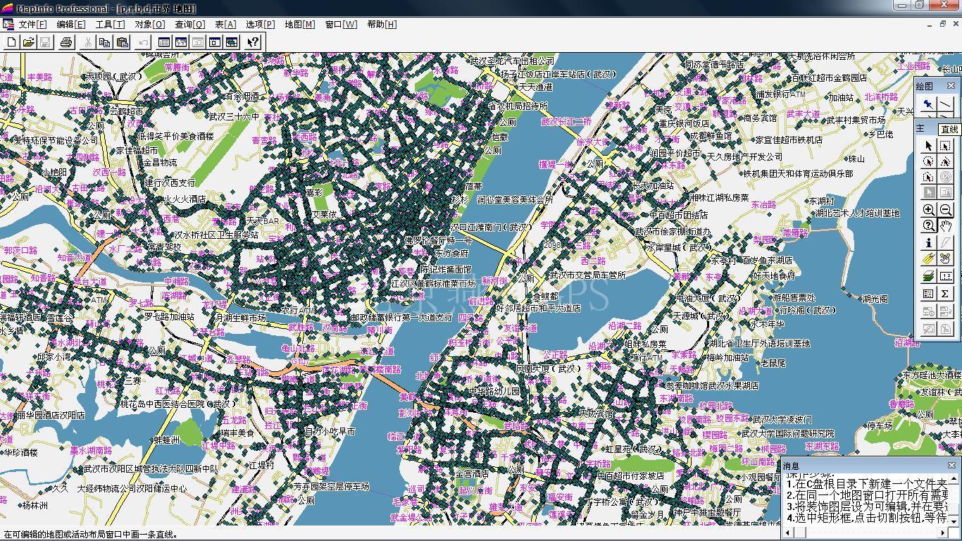 2010年最新武汉电子地图图片