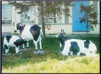 佳木斯小品雕塑奶牛制品雕塑