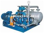 2BW5系列水环真空泵成套装置
