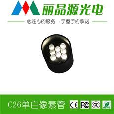 白色 LED像素管