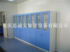 四川实验室通风柜,成都资料柜,储物柜