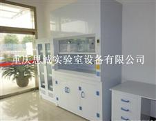 四川PP通风柜