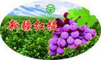 苏州/无锡/常州/不干胶印刷厂