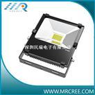 正品CREE大功率30W投光燈(超頻3套件、明緯電源)