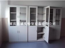 实验室家具,实验室设备,重庆储物柜