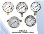 YN,YN-B系列耐震压力表