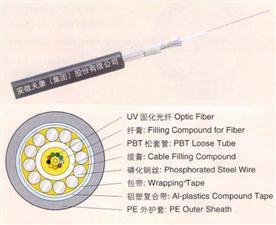 2-12芯中心束管式光缆GYXTA