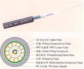 2-12芯中心束管式光缆GYXTS
