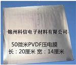 50umPVDF壓電膜