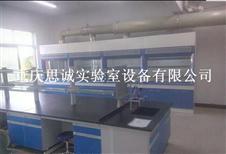 重庆实验室家具,钢木通风柜,全钢通风柜