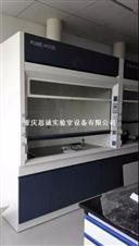 通风柜,重庆通风橱,实验室设备