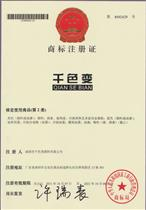 千色变商标注册证书
