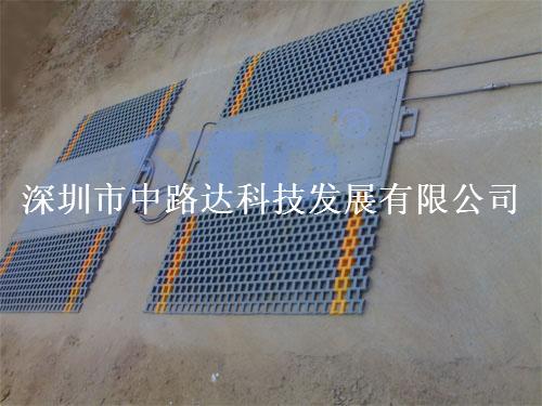静态测重便携式称重仪系统