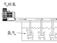 高压鼓风机水产养殖应用